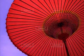 雨の写真・画像素材[531211]