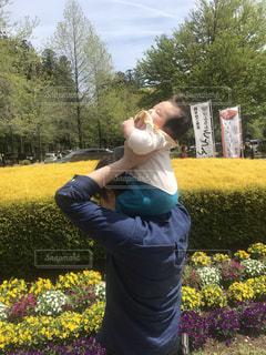 公園,花,人