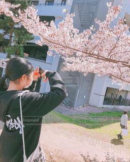 桜を撮っている人の写真・画像素材[2134015]