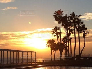 Magic sunset ! 終わらない夏の写真・画像素材[3478319]