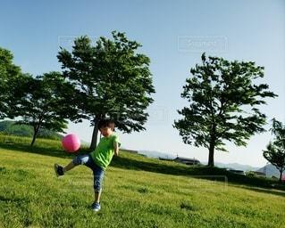 芝生でボール遊びの写真・画像素材[2136601]