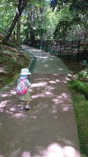 子ども,公園,緑,後ろ姿,人物,背中,人