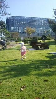 子ども,公園,後ろ姿,人物,人,よちよち,ヨチヨチ