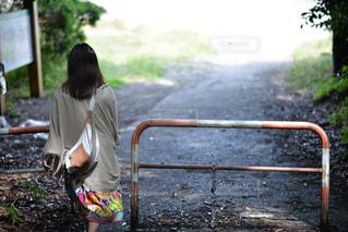 後ろ姿,後姿,館山,沖ノ島