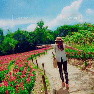 夏,お花畑,後ろ姿,女子,人物,背中,麦わら帽子,人,後姿,可愛い街並み