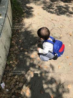 風景,公園,屋外,後ろ姿,落ち葉,人,男の子,1歳児