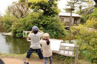 子ども,双眼鏡,そっくり,動物園,探検,兄弟,興味