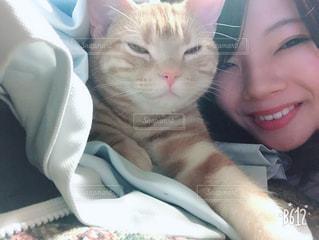 猫,自撮り,セルフィー,笑顔,セルフショット