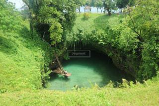 緑の芝生と木々に囲まれた川の写真・画像素材[2211895]