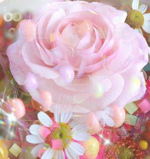 花の写真・画像素材[2167597]