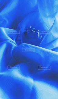 ガラスリンゴの写真・画像素材[2300586]