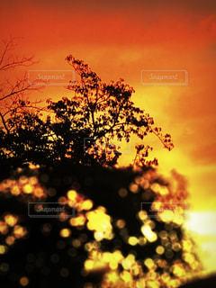 空の写真・画像素材[2651571]