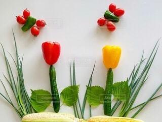 食べ物,カラフル,トマト,野菜,食品,デザイン,ピーマン,装飾,ネギ,大葉,食材,パプリカ,フレッシュ,ベジタブル,胡瓜,とうもろこし