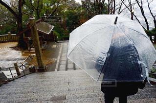 男性,風景,雨,傘,階段,後ろ姿,景色,人,旅行,梅雨,思い出,天気,雨の日