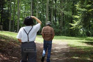 女性,男性,2人,自然,夏,木,太陽,森,緑,後ろ姿,歩く,散歩,林,日差し,洋服,人物,背中,人,後姿,おじいちゃん,お散歩,おじいさん,老人