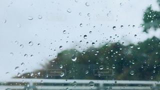 雨の写真・画像素材[2149479]
