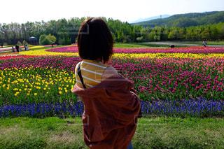 花,花畑,カラフル,後ろ姿,お花,チューリップ,鮮やか,洋服,人物,背中,人,後姿,カラー,草木