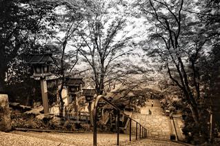 京都貴船の写真・画像素材[2168788]