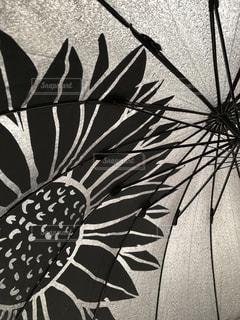 傘のクローズアップの写真・画像素材[2217337]