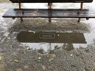 雨の日公園の写真・画像素材[2222546]