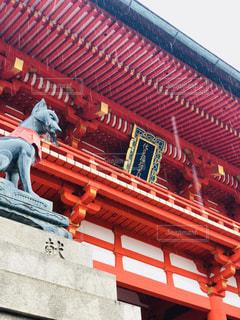 建物,雨,屋外,京都,神社,狛犬,梅雨,寺,天気,雨の日,6月