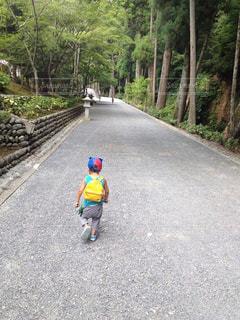 後ろ姿,帽子,人物,背中,人,後姿,男の子,2歳,参道,リュックサック