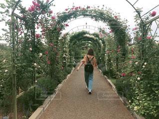 風景,空,公園,花,春,屋外,カラフル,後ろ姿,樹木,人物,背中,人,ガーデン,履物