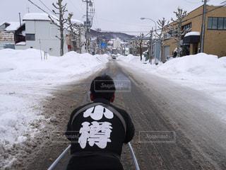 男性,風景,雪,後ろ姿,道路,人物,背中,道,人,後姿,人力車,車夫