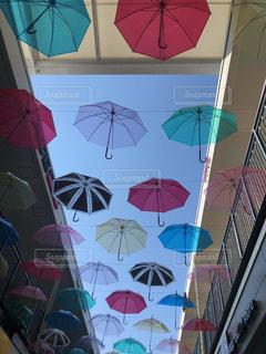 雨,傘,梅雨,映える