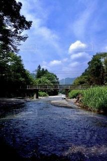 夏の川の写真・画像素材[3696241]