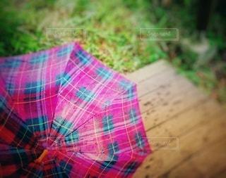 雨,傘,屋外,ピンク,緑,水,チェック,草,雫,雨の日,柄