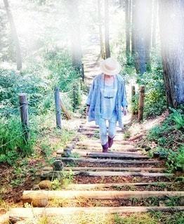 女性,1人,風景,夏,森林,屋外,階段,晴れ,帽子,散歩,樹木,人,朝,レジャー,森林浴,お散歩,リフレッシュ,草木,お出かけ