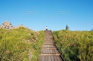 晴れた日の散歩道の写真・画像素材[2739637]