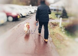 男性,犬,ファッション,風景,動物,黒,散歩,道路,人物,道,人,雨上がり,コーディネート,愛犬,コーデ,ブラック,フォトジェニック,ボカシ,黒コーデ,インスタ映え