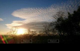 自然,風景,空,屋外,太陽,朝日,雲,樹木,正月,お正月,日の出,新年,初日の出,フォトジェニック,インスタ映え
