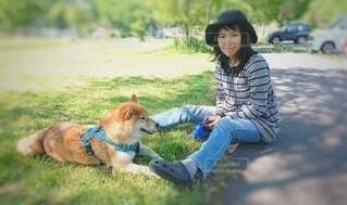 愛犬と木陰でリラックスの写真・画像素材[4584491]