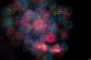 空の花火の写真・画像素材[2342831]
