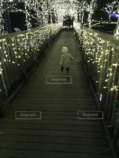 後ろ姿,光,イルミネーション,人,歩道,光の道