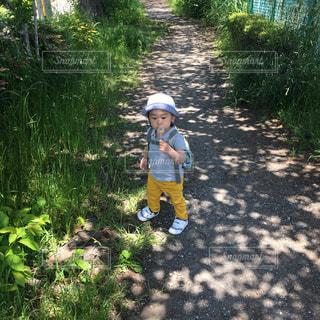 草の上に立っている小さな男の子の写真・画像素材[2265187]