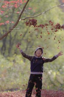 木の隣に立っている女の子の写真・画像素材[859189]