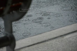 雨,水面,波紋,梅雨,天気,雨の日,水輪