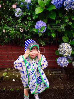 風景,雨,散歩,子供,紫陽花,梅雨,japan,男の子