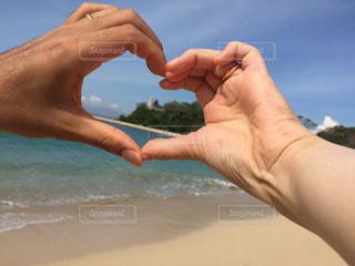 浜辺で水筒を持つ手の写真・画像素材[2279753]