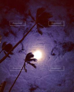 暗いの写真・画像素材[193185]