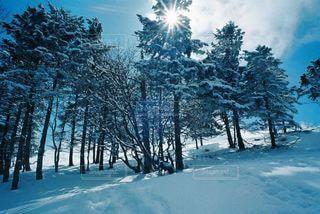 雪に覆われた斜面の写真・画像素材[2214585]