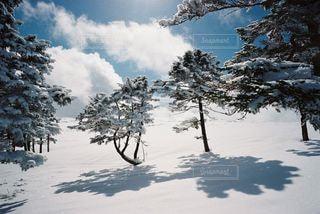 雪山の写真・画像素材[2214635]
