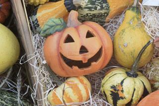 ハロウィンのかぼちゃたちの写真・画像素材[2501298]