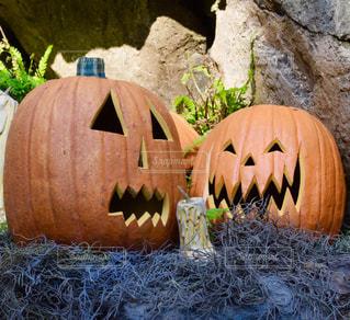 かぼちゃのランタンの写真・画像素材[2501301]