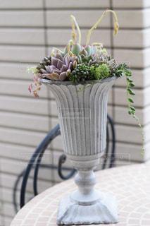 素敵な花器に多肉植物の寄せ植えをの写真・画像素材[2724992]