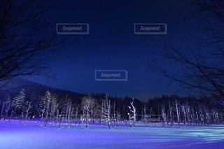 冬の青い池ライトアップの写真・画像素材[3376408]